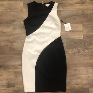 Calvin Klein Work Dress NWT